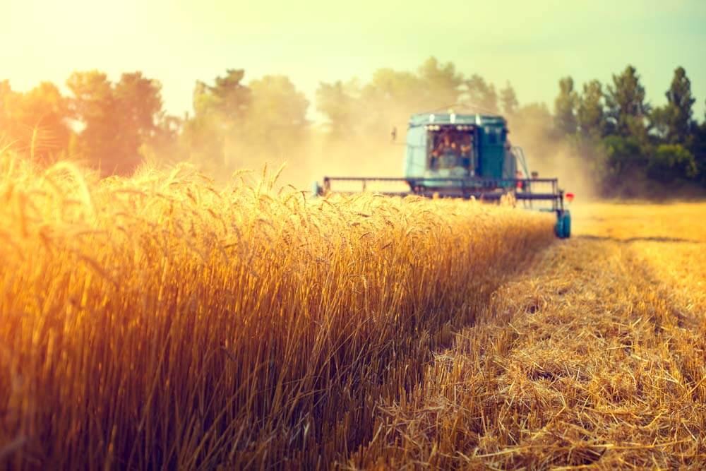 Mähdrescher Landwirtschaft